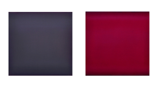 """Evening Potion, Two Panel Duet, 12"""" x 27"""" (total, installed), 2011"""