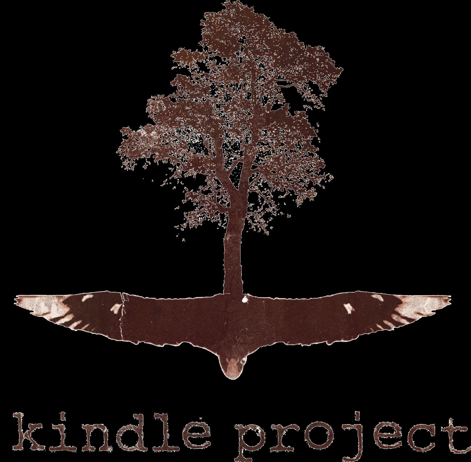 Nexus • Kindle Project